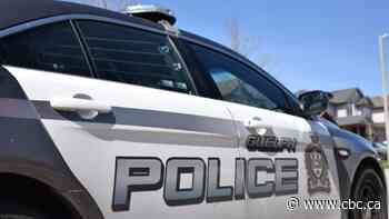 Guelph police look for driver who fled a school zone to avoid ticket