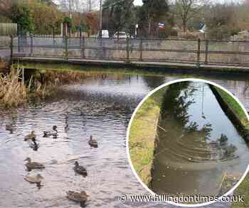 Meeting will discuss raw sewage issues at River Chess