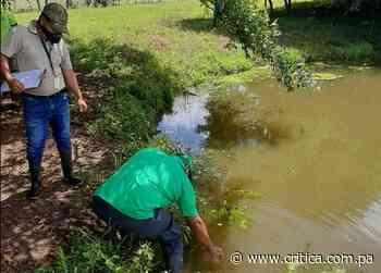 Investigan contaminación de fuente de agua en Ocú - Crítica