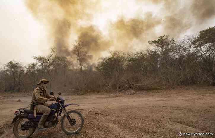 Brazil adds some to force fighting vast wetlands blazes