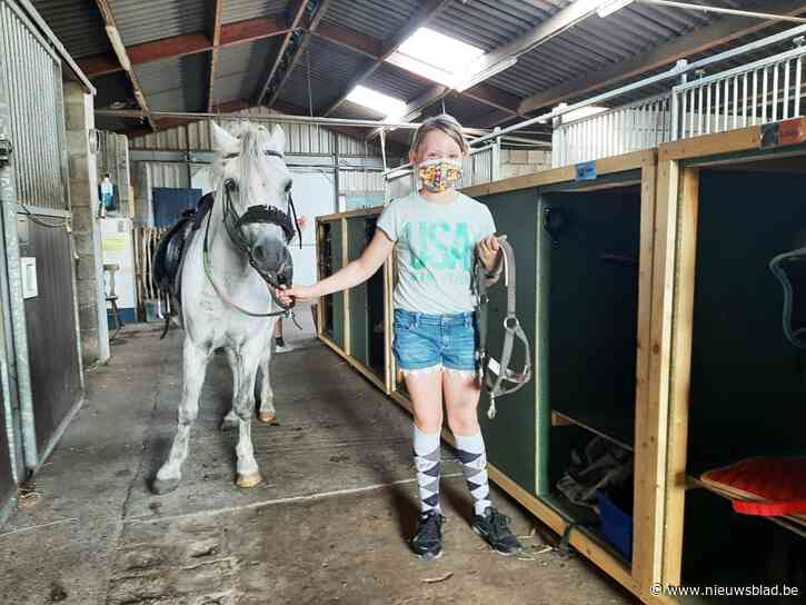 """Hippisch Zorgcentrum Heikenhof volledig in het nieuw: """"Paard is meest geduldige en eerlijke wezen op aarde"""""""