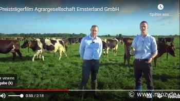 Landwirtschaft: Brandenburgs Innovationspreis für Agrargesellschaft Emsterland Kloster Lehnin - Märkische Onlinezeitung