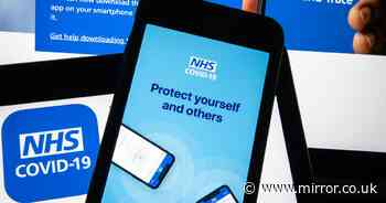 NHS Test and Trace app: All the details on how it tracks the spread of Covid-19