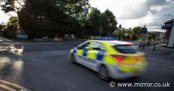Police officer stabbed and three others attacked while attending 'fight'