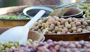 Covid-19 : Annulation de la fête de l'olive à Pignan - le mouvement - lemouvement.info