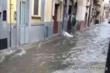 Bufera di pioggia e grandine su Bari e provincia, allagamenti a Carbonara - BariViva