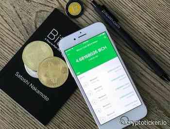 Bitcoin Cash (BCH) Kurs Prognose - der BCH/BTC Kurs fällt ins Bodenlose! - CryptoTicker.io