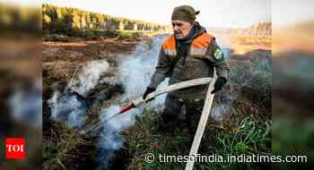 In Siberia forests, climate change stokes 'zombie fires'
