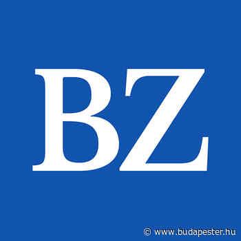 Anerkennung für ungarische Weine - Budapester Zeitung