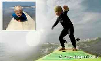 Tiny surf dude! Boy aged FOUR shows off his skills as he rides the waves off Devon