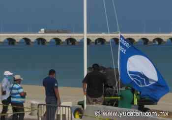 Mañana izan la Blue Flag en Progreso - El Diario de Yucatán