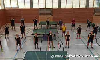 FC Zandt geht mit vier Mannschaften in die Saison - Mittelbayerische