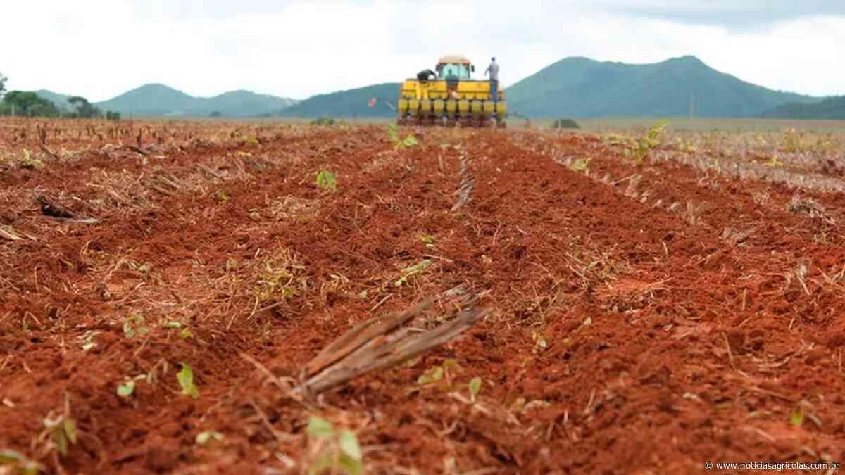 Plantio da soja começou no Paraná: produtores de Mangueirinha já semearam 7% da área - Notícias Agrícolas