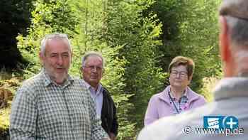 Rettet Slowenische Eiche den Wald in Balve? - WP News