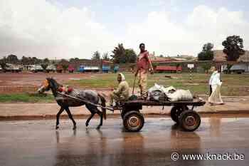 'Europa heeft eindelijk begrepen dat je in Eritrea geen wegen bouwt zonder dwangarbeid'