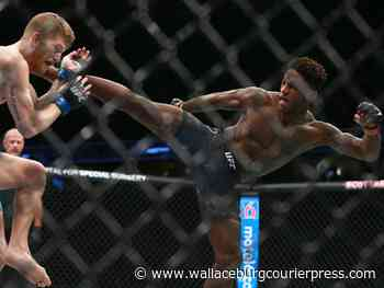 Calgary's Dawodu enters UFC 253 bout with sights on top featherweights - Wallaceburg Courier Press