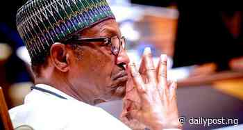 Zamfara killings: Arewa groups petition President Buhari - Daily Post Nigeria