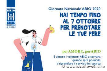 Reggio Calabria: sabato la 16ª Giornata Nazionale ABIO - Stretto web