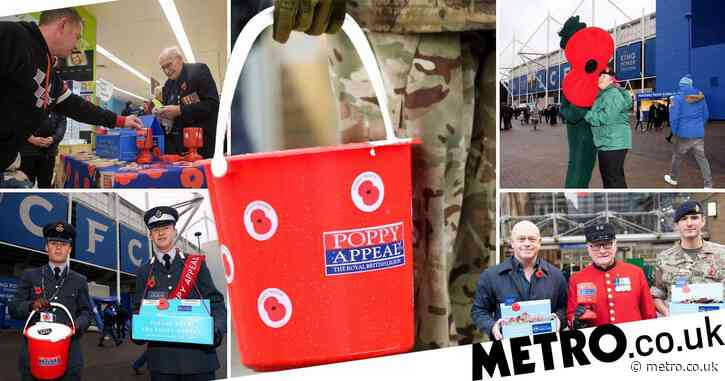 Poppy Appeal at risk as vulnerable sellers unable to fundraise due to coronavirus