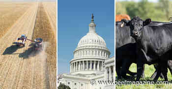 7 ag stories you might have missed this week - Sept. 25, 2020