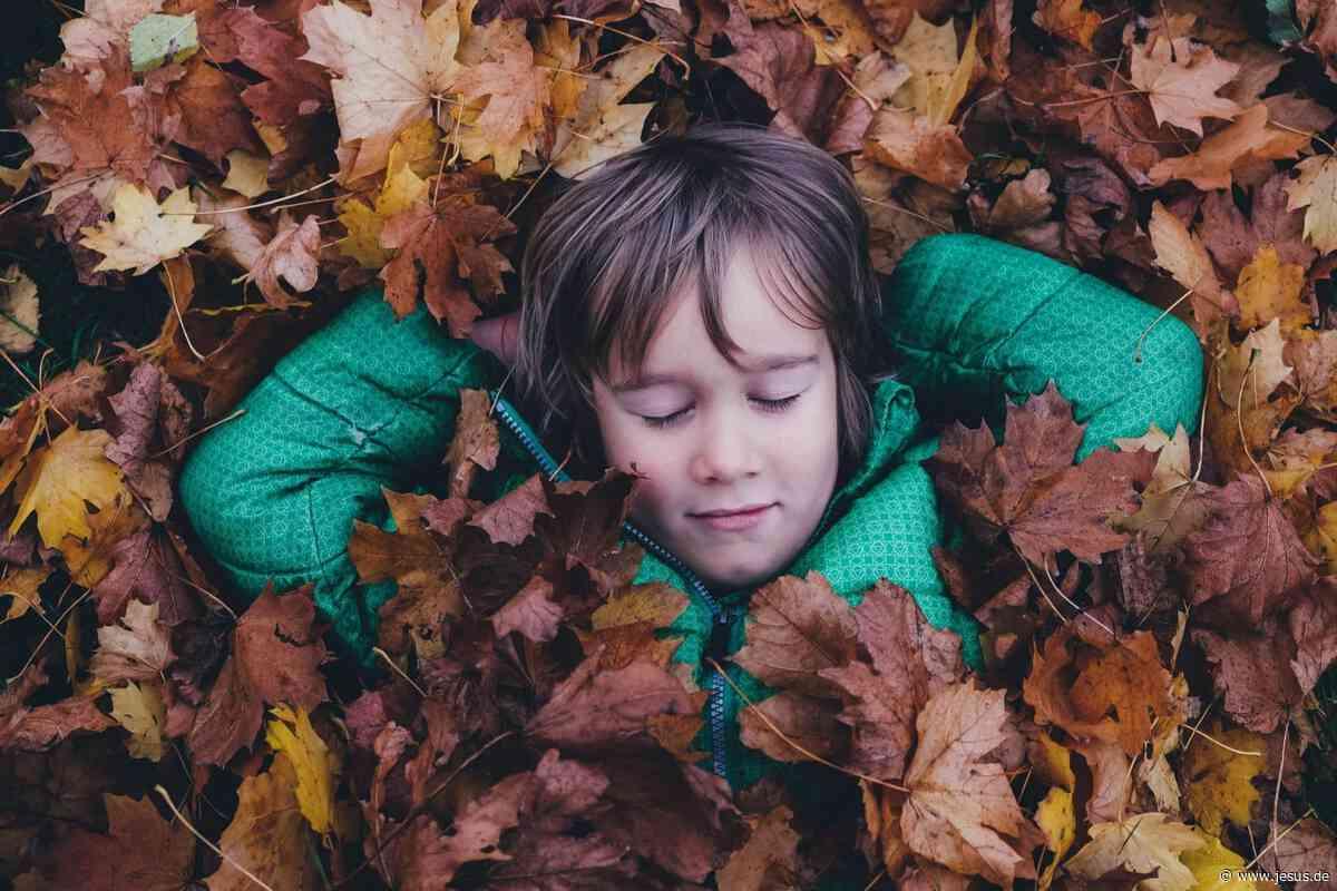 Die Schöpfung schätzen lernen: 7 kreative Tipps für Familien