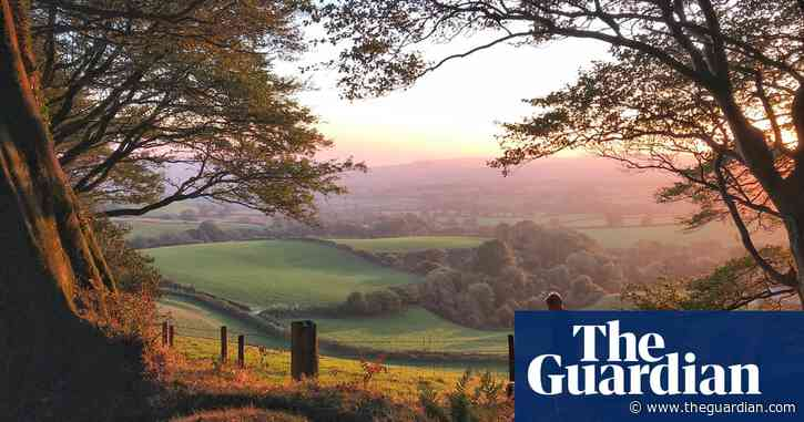 Tell us about a UK forest walk to win a £200 holiday voucher