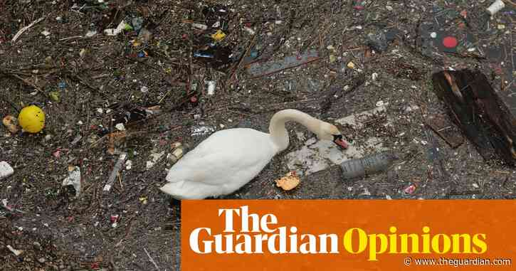 How clean are England's rivers? The latest report makes for uncomfortable reading | Rachel Salvidge