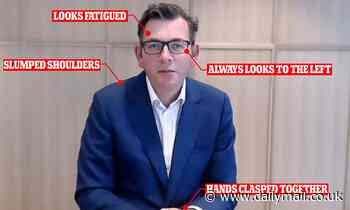 What Dan Andrews' body language during the hotel quarantine inquiry really says