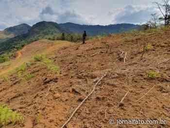 Polícia Ambiental flagra irregularidades na zona rural de Muniz Freire - Jornal FATO