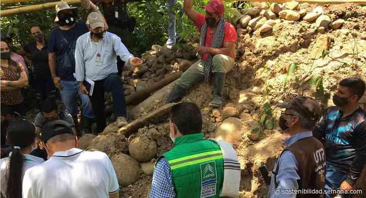 Hallan restos fósiles de un mastodonte en Quinchía, Risaralda - Semana
