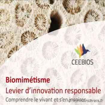 Le biomimétisme, levier d'innovation durable ! Médiathèque du Canal jeudi 15 octobre 2020 - Unidivers