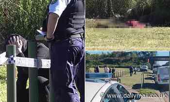 Emu Plains stabbing breakthrough as two men arrested