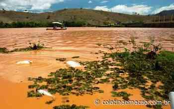 Mais 25 moradores de Baixo Guandu recebem indenizações da Renova - Colatina em Ação
