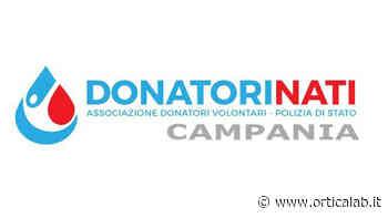 Donare sangue è vita: la solidarietà fa tappa ad Avellino - Orticalab