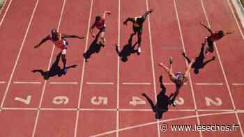 Saint-Maurice : imbroglio sur le financement des études des sportifs de haut niveau - Les Échos