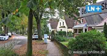 Bad Schwartau stellt im Herbst doch wieder Tonnen zum Laub entsorgen auf - Lübecker Nachrichten