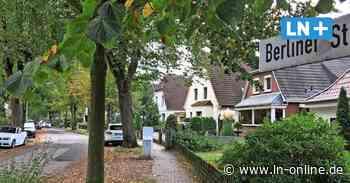 Ärger um Laubbeseitigung in Bad Schwartau - Lübecker Nachrichten