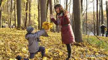 Stodo News   Herbstferienprogramm für Bad Schwartau steht fest - Stodo News