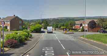 Warning as man in white van tries to abduct two girls, 9 and 10, in two days