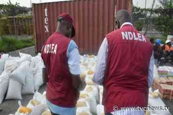 NDLEA confisticates illegal substances in Zamfara - TVC News