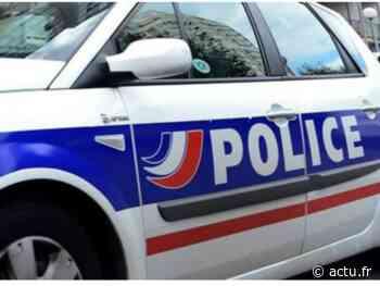 Seine-et-Marne. A Moissy-Cramayel, il dérobe une BMW avec des enfants à l'arrière - actu.fr