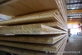 Ottawa invests $4M in mass timber buildings at Chalk River - Wood Business - Canadian Forest Industries