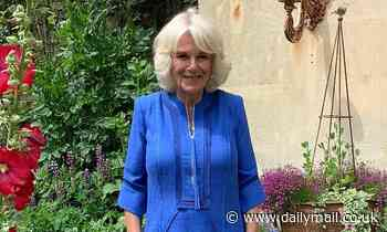 Duchess of Cornwall, 73, urges the nation to help OAPs 'break the silence of loneliness'