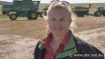 Out-of-work pilots retrain as machinery operators for WA grain harvest