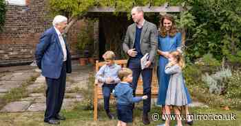 Prince George was intrigued by David Attenborough's shark tooth in new pictures