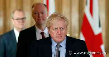 """Boris Johnson """"has not imposed a new ban for fear Rishi Sunak would quit"""""""