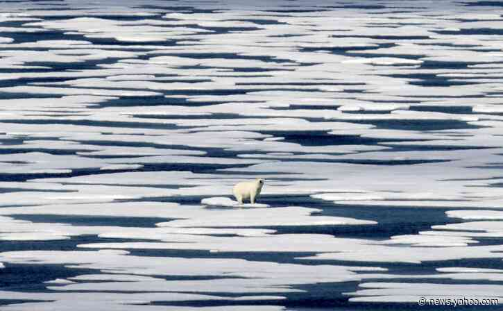 Leaders to UN: If virus doesn't kill us, climate change will