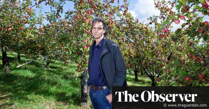 Apples from 'perfect harvest' rot on the ground as demand for cider slumps