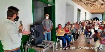 Gallinas ponedoras para impulsar economía en Ambalema - El Nuevo Dia (Colombia)