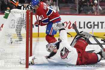 Ste-Agathe's Dubois scores twice to lead Columbus over Canadiens - SaltWire Network